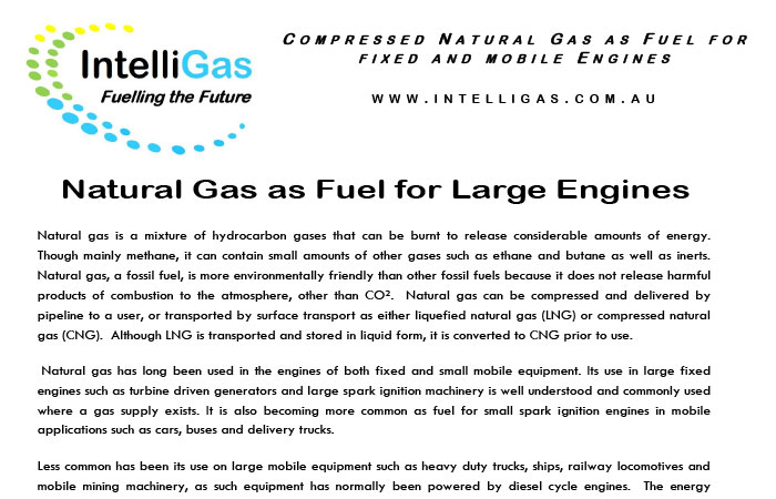 Natural Gas White Paper Thumbnail