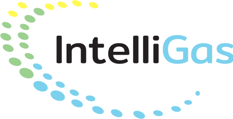 Intelligas Logo